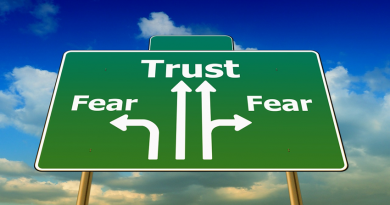 image of a signpost saying trust and fear