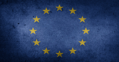 picture of the European Union flag