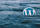 WordPress security update: go hard or go home