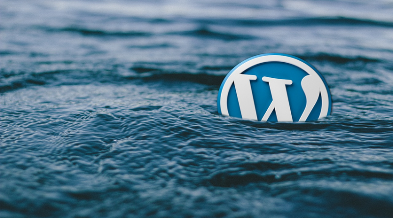 WordPress logo in water image