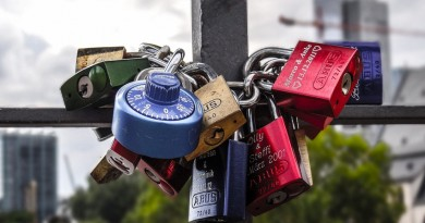 picture of padlocks in a bunch