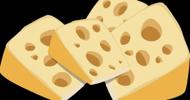 photo of swiss cheese