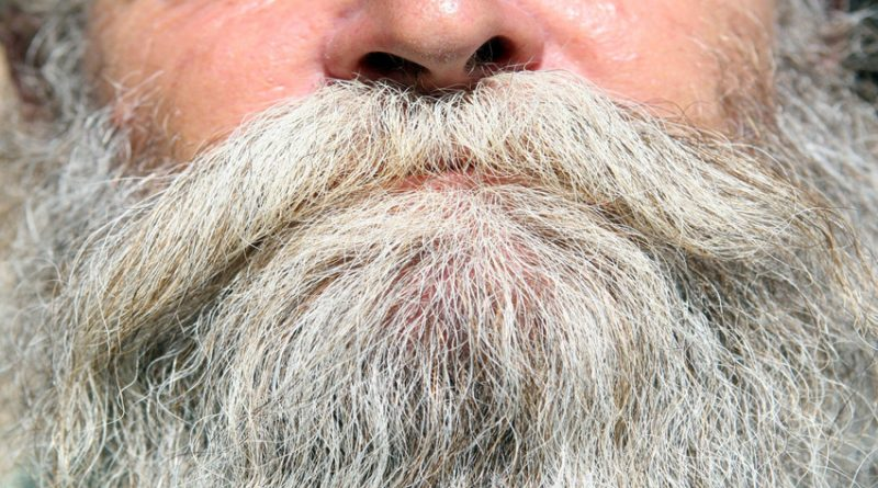 Cropped image of grey beard