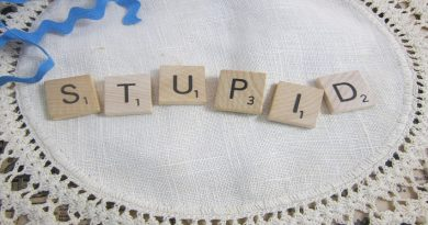 the word 'stupid' spelled out in scrabble tiles