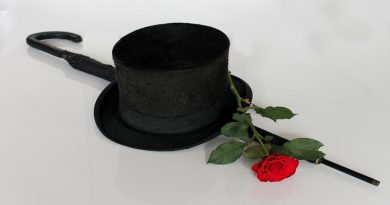Photo of a black top hat and a red rose