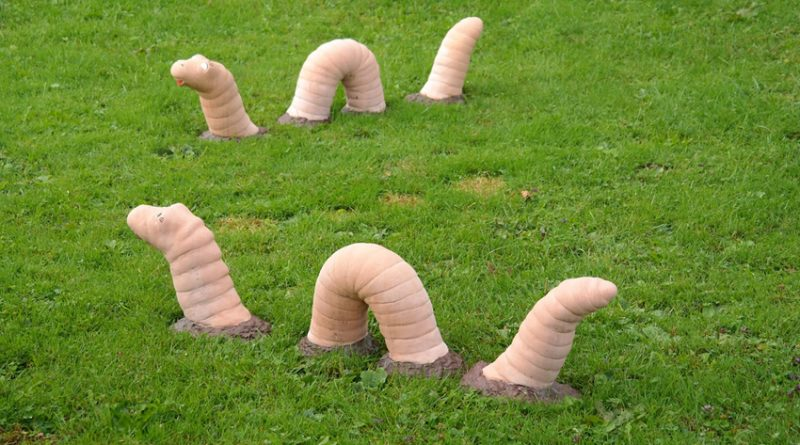 large worms emerging from ground
