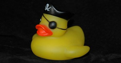 rubber duck with pirate patch
