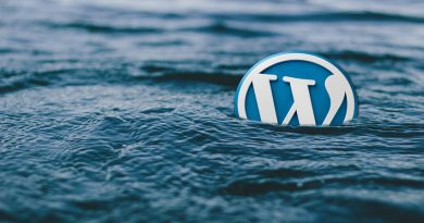 WordPress logo floating in the sea